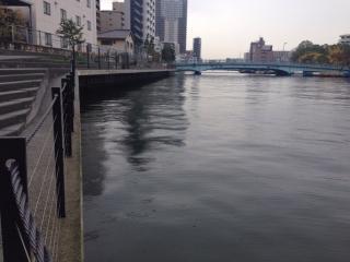 雨の朝の川
