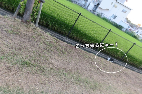 IMG_157820160912.jpg
