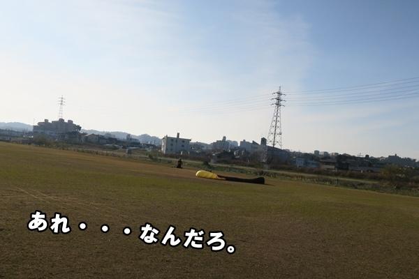IMG_427020161223.jpg