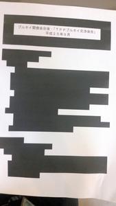TPP黒塗り