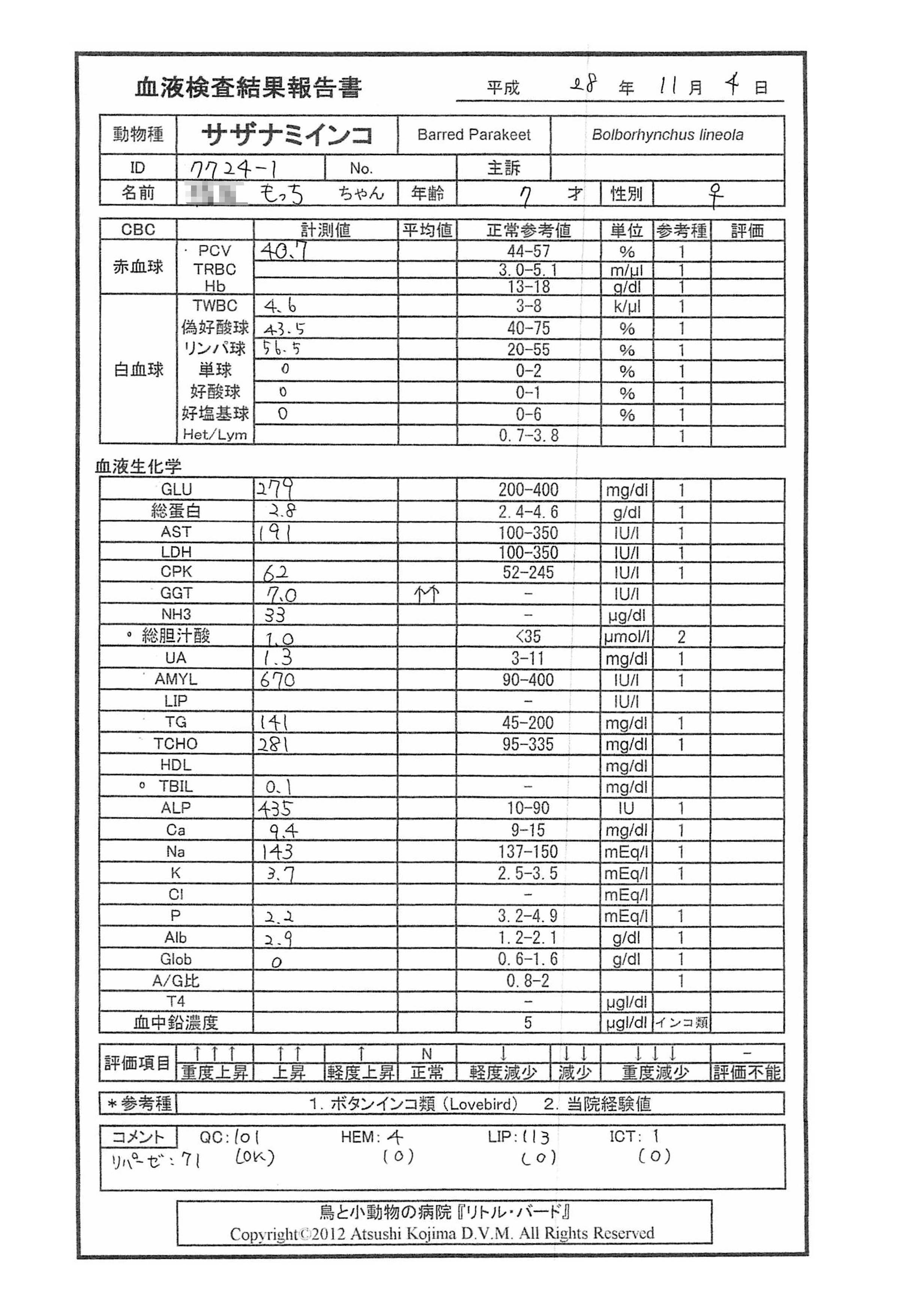 もっち血液検査20161104