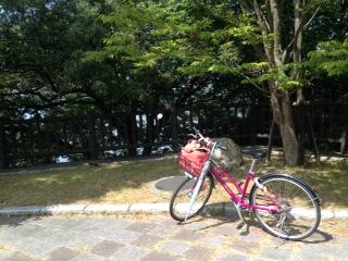 しまなみ海道自転車