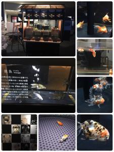 fc2blog_20161213192646707.jpg