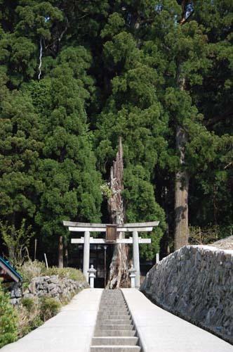 okimikijiso01254852.jpg
