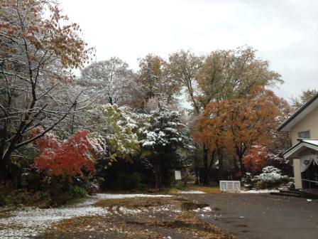 2016年初雪と紅葉1 in旭川