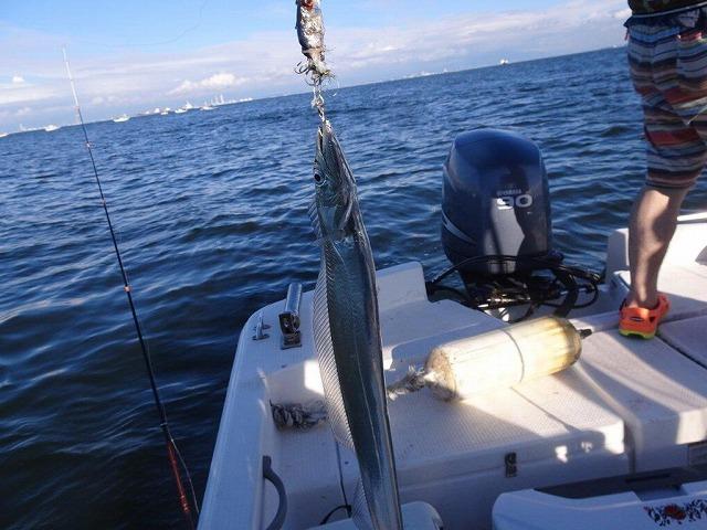 太刀魚釣り (23)