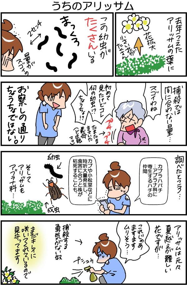 2016053002.jpg