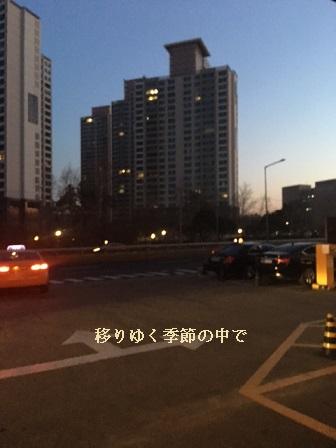 20160315sph1.jpg