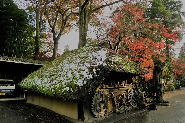 2016平林寺 小屋と紅葉