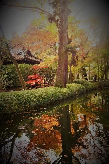 2016平林寺の逆さ紅葉