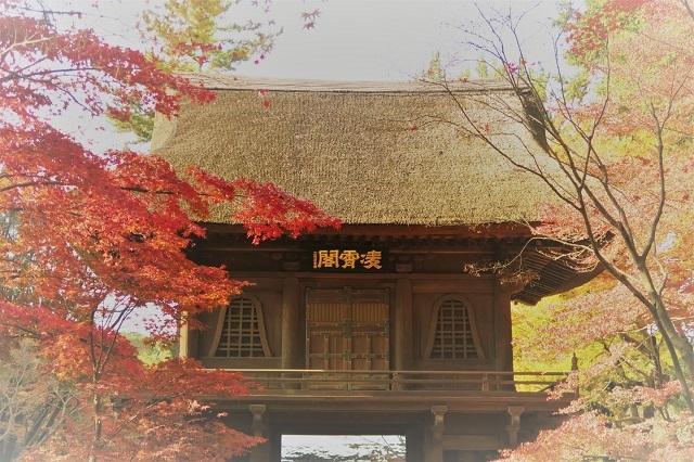 2016平林寺の山門と紅葉(2)