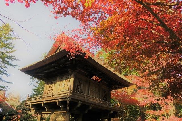 2016平林寺の山門と紅葉(3)