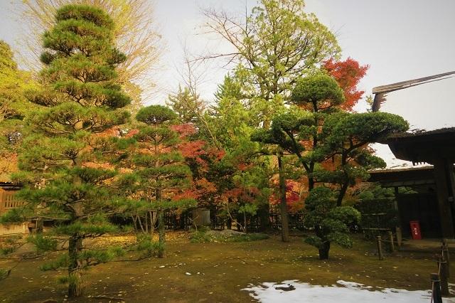 2016平林寺の庭園の紅葉(1)