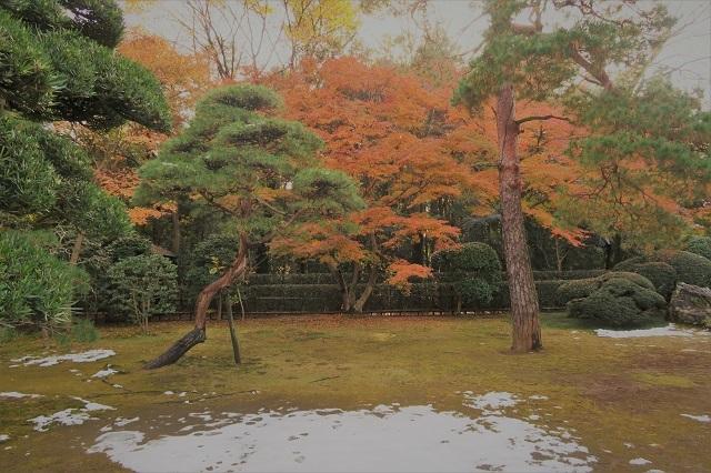 2016平林寺の庭園の紅葉(2)