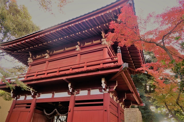 2016松戸・本土寺の紅葉(3)