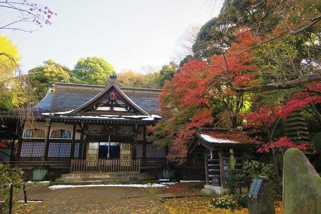 2016松戸・本土寺の紅葉(10)