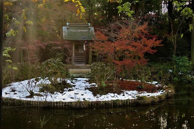 2016松戸・本土寺の紅葉(12)