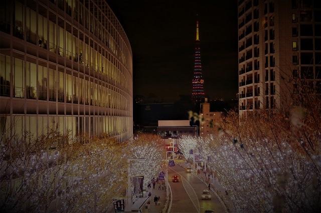 2016六本木ヒルズのイルミネーション(10)