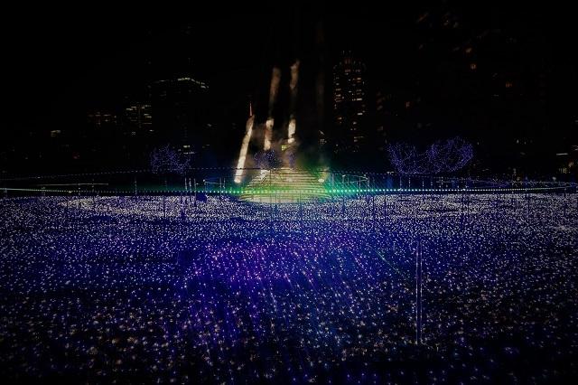 2016の東京ミッドタウンのイルミネーション(7)