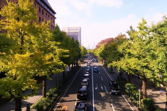 2016横浜の紅葉(1)