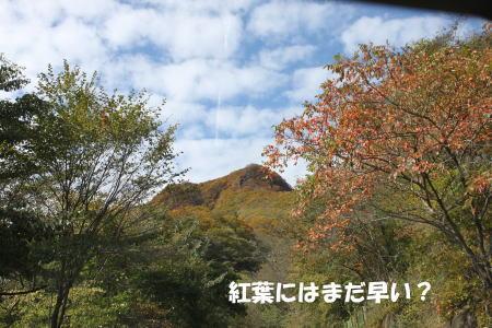 2016-10_25_2.jpg