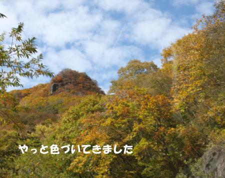 2016-10_25_4.jpg