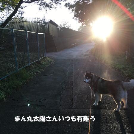 2016-10_27_2.jpg