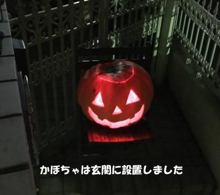 2016-10_27_5.jpg
