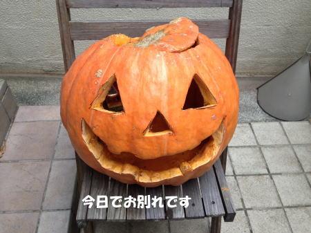 2016-11_02_1.jpg
