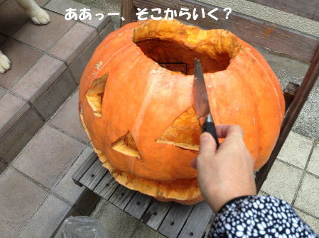 2016-11_02_3.jpg