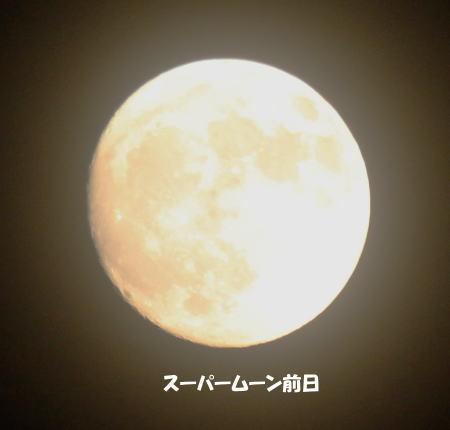 2016-11_15_1.jpg
