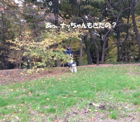 2016-11_23_5.jpg