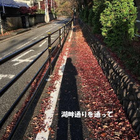 2016-11_28_9.jpg