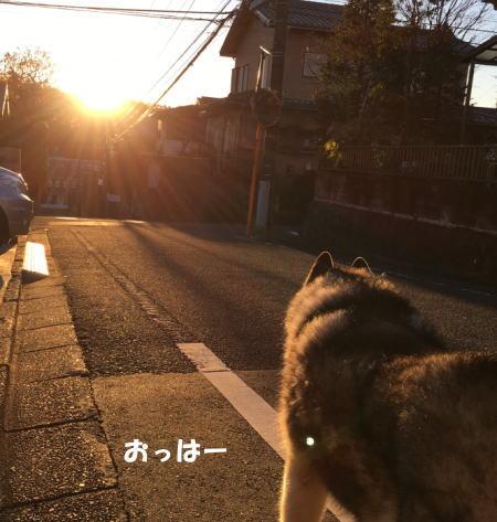 2016-12_02_1.jpg