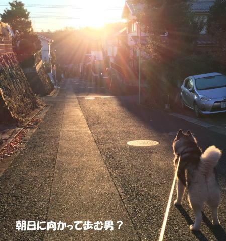 2016-12_08_3.jpg