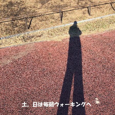 2016-12_12_1.jpg