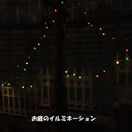 2016-12_13_1.jpg