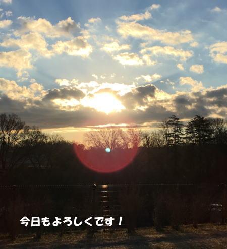 2016-12_19_4.jpg