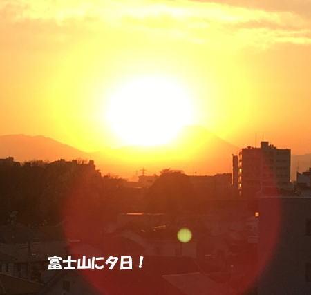 2016-12_20_11.jpg