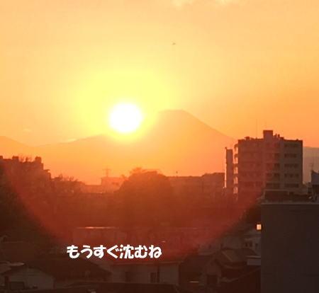 2016-12_20_12.jpg