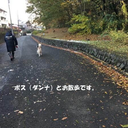2016-11_28_2 - コピー