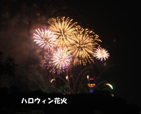 2016_1030_4.jpg