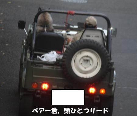 2016_1107_11.jpg