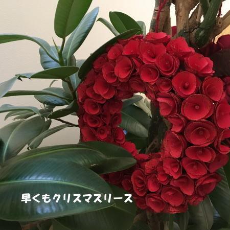 2016_1107_6.jpg