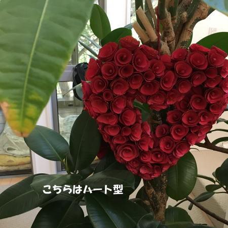2016_1107_7.jpg