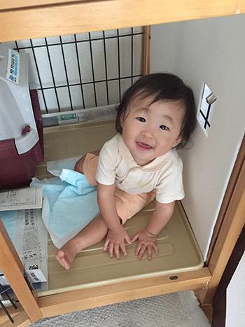 生後11か月