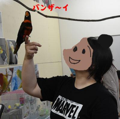 9_カタヤマ先生
