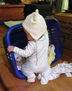 洗濯カゴで遊ぶ