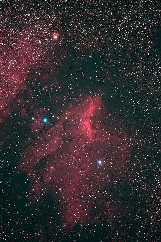 ペリカン星雲.jpg