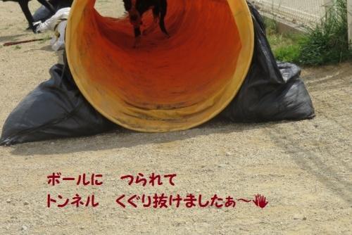 トンネルくぐり~~(^^♪